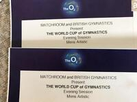 1 x Adult 1 x Child - The World Cup of Gymnastics tickets