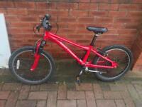 Kids Gary Fischer Bike
