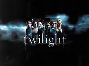 Twihards, sell your Twilight memorabilia on Ebay!