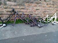 Dawes Duchess Low Step Dutch Style Heritage Bike frames x 6