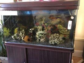 Aquarium tank with all hardware