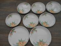 Melamine Plates x 8 Pretty Flowers - Camping?