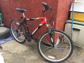 As New Mountain Bike
