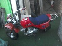 Monkey bike only 315 miles from new . can be made road legal very easy ,