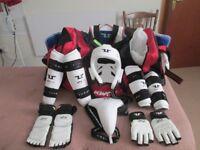 Premier Taekwondo Sparring Full Kit with carry bag WTF