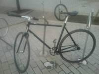 Gharge plug bike