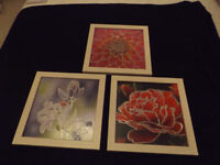 THREE FLOWER PICTURES OVERLADE ON THE GLASS WITH SILVER OUTLINE