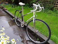 Raleigh Cruiser Town Bike