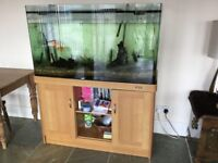Very large fish tank with stand, filter system/pump etc