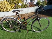 townsend ladies town bike