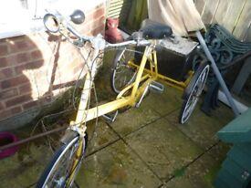 Three wheeled cycle