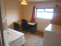 Double room to rent in spacious shared house