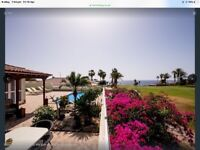 0f9dd9cc1f Luxury 3 bed villa to rent in TENERIFE. PRIVATE POOL. AMARILLA GOLF COURSE  PRIVATE