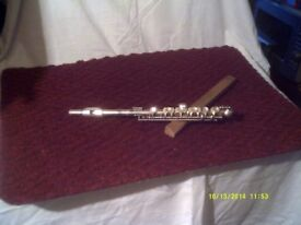 PICCOLO In VERY GOOD CONDITION & In IT'S CASE ++++++++++++