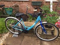 Ladies Apollo Metis Dutch Bike