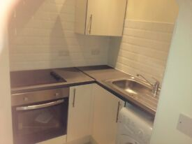 1-bed duplex flat to rent