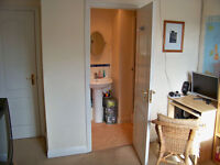 LArge single/ double room with en-suite bathroom