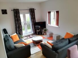 1 bed room to rent - Available now - No agency fees