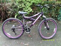 Mountain Bike = Adult