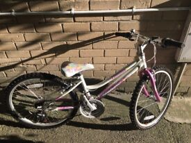 Girls Falcon Bike for 8-12 years old