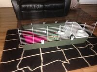 large rabbit cage +litter tray water bottles hay feeding bowl all new