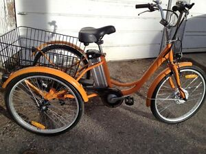 Adult-sized Electric and Pedal Trike Bike