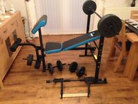 Weights bench and chinning bar