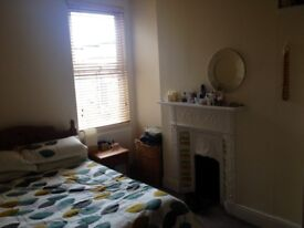 Spacious and very comfortable high spec double bedroom to rent for a single professional