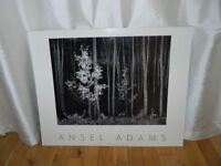 ANSEL ADAMS POSTER,PICTURE. AUTHORIZED EDITION. ONLY £5