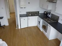 Nice West End 1 Bedroom Flat For Rent, Irvine Place, Aberdeen AB10 6HA