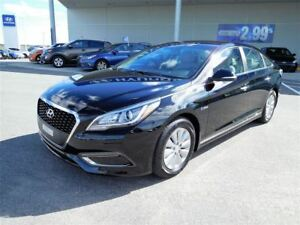 2016 Hyundai Sonata Hybrid GL,MAGS,CAMERA,CRUISE,A/C,BLUETOOTH