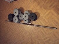 weights and pole