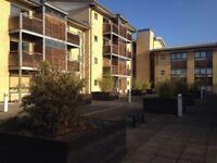 Studio property to rent in Coleridge road CB1