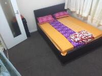 Double room for rent for a single vegetarian girl/female