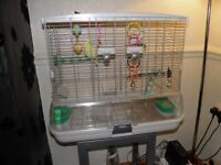 Two young Budgies plus large VISION cage.