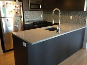 Spring Sale: $2399  for Quartz or Granite kitchen countertop up to 40 sq.ft.