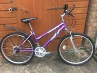 Cycle - Mountain bike