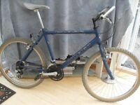 ADULTS GOOD QUALITY RALEIGH MAX MOUNTAIN BIKE IN GOOD CONDITION.