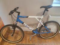"22"" frame mountain bike."