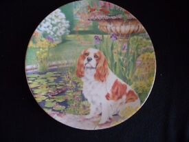 "COALPORT FINE BONE CHINA PLATE ""BEST OF FRIENDS"" (SPANIEL)"