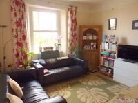 1 Bedroom Flat Fully Furnished - Cotham