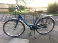 Bicycle ridgeback good condition include locks