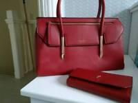 Brand New Fiorelli Bag/Matching Purse
