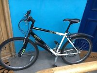 Raleigh Mountain Bike (very good condition)