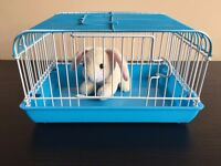 Cute Fully Functioning Mini Pet Cage for Childrens Toys - 12cm Tall in 3 Colours, Red, Pink & Blue