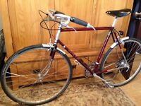 """22 1/2"""" Raleigh Classic. Upgrades - Nitto, Campag, Ultegra, Dura Ace, 105, Swap for Brompton"""
