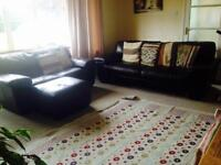 DFS Brown Italian leather suites
