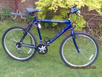 EMANUELLE PANTHER MOUNTAIN BIKE ONE OF MANY QUALITY BICYCLES FOR SALE