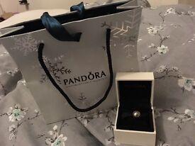 Pandora World Charm