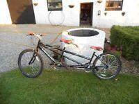 Viking Saratoga Shimano Tandem Bicycle 21 Speed Mtb